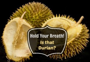 what does durian smell like