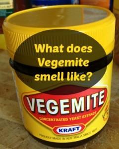 what is vegemite